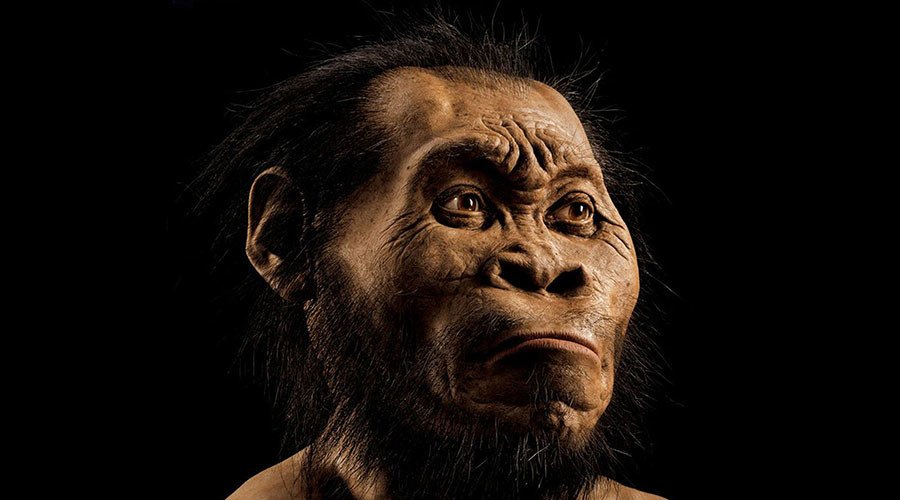 Homo sapiens 'stole technology' from our primitive ancestors (VIDEO)