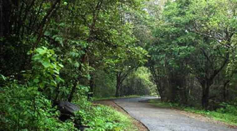 Sanjay Gandhi National Park: State to tie up with Belgium govt to make park a touristattraction
