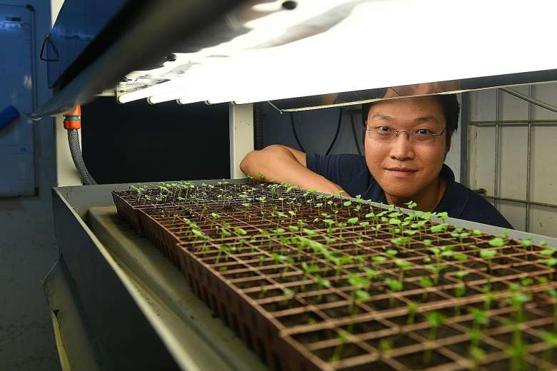 Release of land paves way for high-tech farming