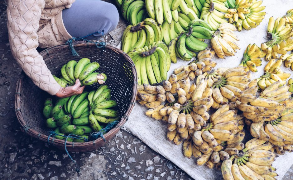 Cash and chemicals: For Laos, Chinese banana boom a blessing and curse
