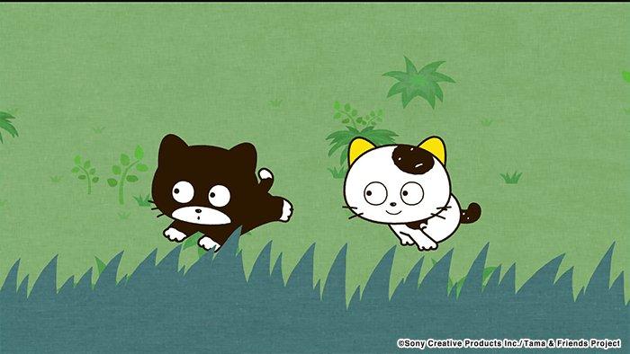 アニメ タマ&フレンズ~うちのタマ知りませんか?~ 今日のお話は「ベーは近道名人!」タマとベーはベーが新しく見つけた近道