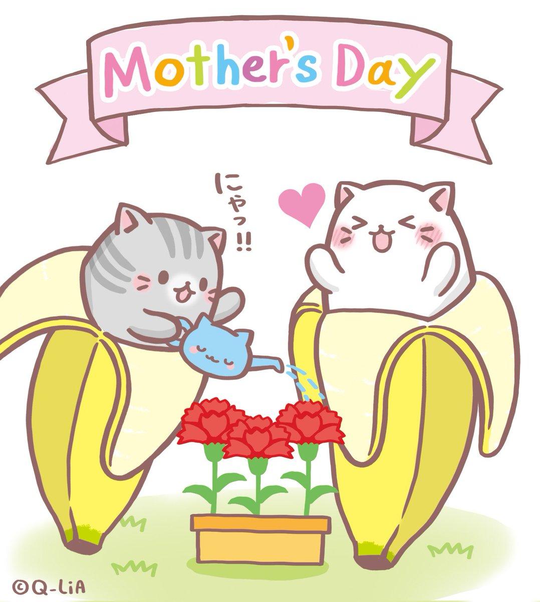 今日は #母の日  にゃ! ばなにゃ達が育てていたカーネーションに花が咲いたよ!! 全国のお母さん方へプレゼントしたいみ