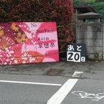 翠巒祭2017A