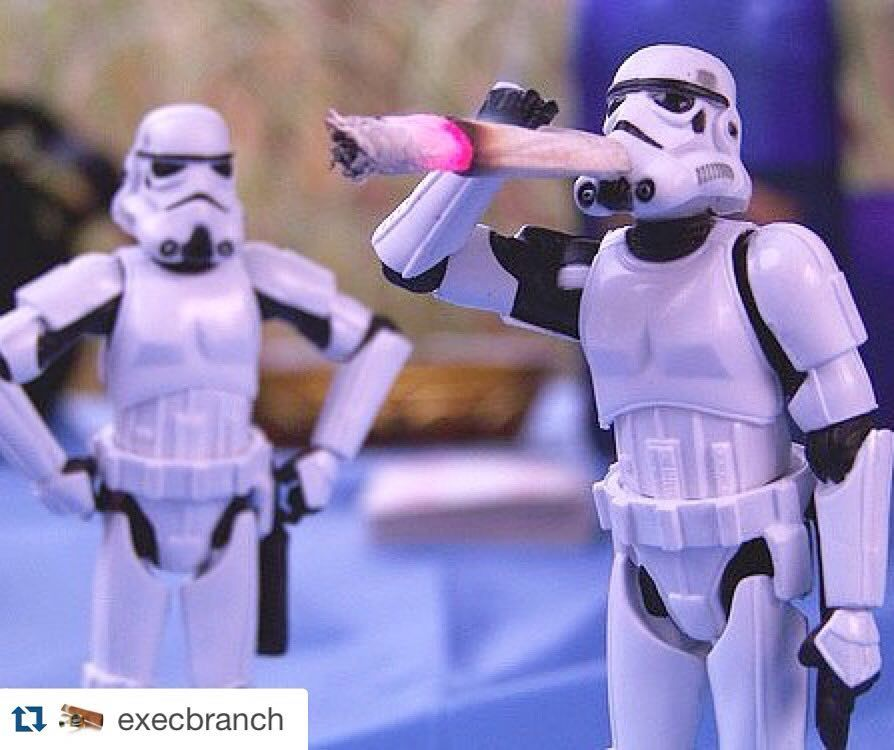 Follow my fam @execbranch !  #Repost @execbranch ・・・ #stormsmokers https://t.co/y5b5D88UvL