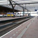 NS haalt spreeuwenlaser weg van Rotterdam Centraal. https://t.co/VUqGwehDKm via @NUnl https://t.co/9ijf2bdbzm