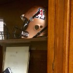 On display in the House of Representatives! ???? #WildcatWednesday #BearDown #FundAZStudents https://t.co/gtU1hZhN4l