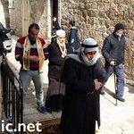 أخجلتنا شيبتك !!  أحد المرابطين يواصل اداء الصلاة على أبواب #المسجد_الأقصى رغم منعه من دخوله من قبل #الاحتلال. https://t.co/hjJsOVEBwk
