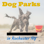 Where Are The Best #Dog Parks In #Rochester NY? Find out at https://t.co/qYNtryPJ2b via @KyleHiscockRE #ROC https://t.co/5OuXjqaMRC