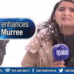 #MountainQueen looks stunning in snowfall. #Murree #Pakistan Watch Here: https://t.co/B2ZZK2mRBk https://t.co/yqbtW4Vya1