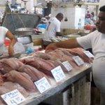 #EconomiaPA #Comenta ¿Ha notado usted escasez de los productos del mar en el Mercado del Marisco? https://t.co/188YYPKKLG