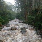 #Prevención evite el ingreso a ríos... lluvias intermitentes aumentan nivel de caudales https://t.co/dxW1lbCdFG