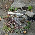 @tvnnoticias fuga de agua inmensa San Pedro Juan Días lleva 3 días votando abundante agua AUXILIO https://t.co/JzQxF6sF6l