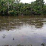 ⚠ #Precaución Río Santamaría en Veraguas aumenta su caudal por lluvias en la cordillera. NO arriesgues tu vida. https://t.co/pPnLVt3sBo