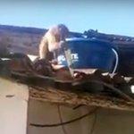 Macaco embriagado ameaça frequentadores de bar na Paraíba com uma peixeira.  https://t.co/e65TyTEqI3 https://t.co/tXkvGL3dnP