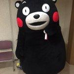 おはくま~!今日は金曜日、あとひとがんばりかモン☆ pic.twitter.com/PI4WuNiQ…
