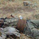 Cizre ve Surda şimdiye kadar toplam 603 terörist öldürüldü. Darısı hayatta olanların başına. https://t.co/SNz2viU0Ao