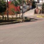 Pintado de guarniciones en Monte Novo, Ánimas #Xalapa. @americozuniga @ComSocialXalapa @AytoXalapa https://t.co/i2jTDw1GOo