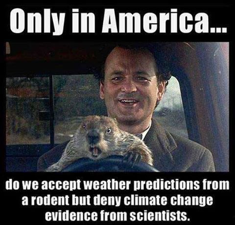 Only in America do we accept a weather prediction from a #groundhog yet deny #climatechange from scientists. https://t.co/408RPWKq6S