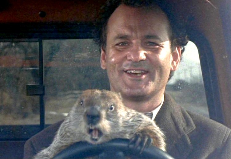 Happy #GroundhogDay! Punxsutawney Phil did not see his shadow. That means an early spring! https://t.co/p8TDXyYXM6