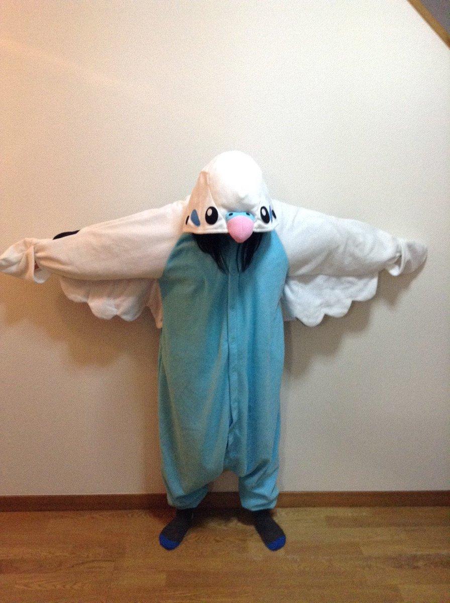 【悲報】こちらをパジャマ代わりにして、愛鳥と触れあおうとしたところ、聞いたこともない悲鳴を上げて愛鳥が逃げ出しました…… https://t.co/TGo3iGFpUQ