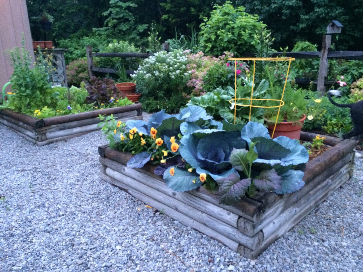 Concepts and Benefits of Raised Beds Gardening https://t.co/yiI0W8u1Vp via @bg_garden  #gardenchat https://t.co/0JzKd43DEd