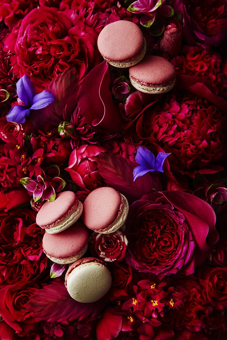 Macaron Jardin Parfumé. Rose & Jasmine #limitededition from the #LesJardins2016 collection for #february https://t.co/ym2oqkLqD5
