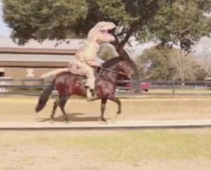 need a laugh mississippi man rides horse while wearing dinosaur