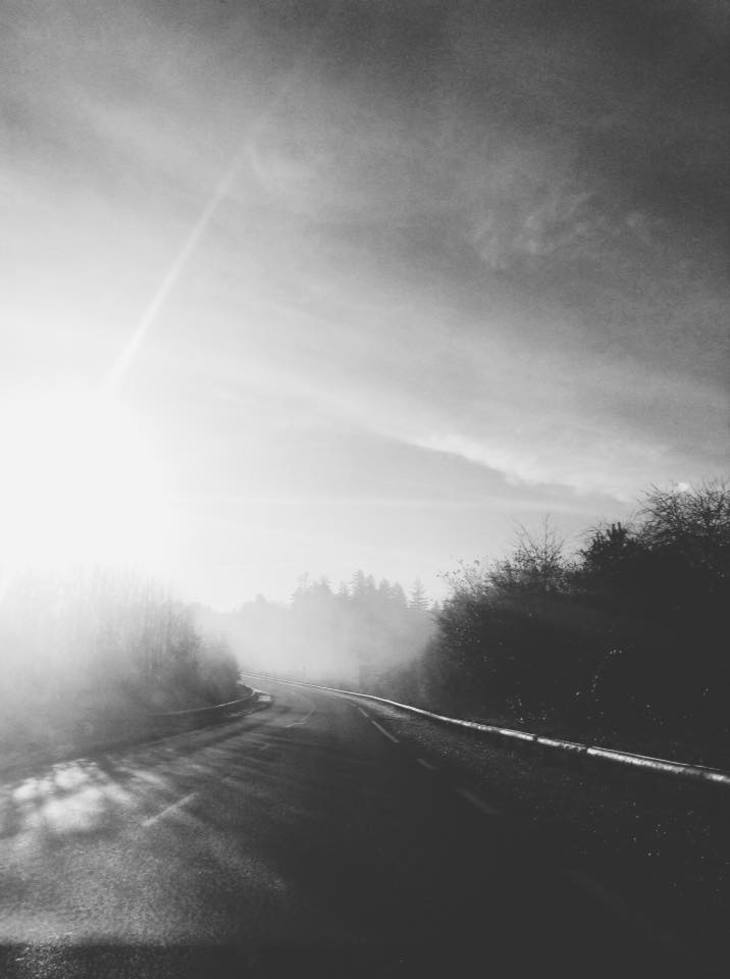 RT @hitRECord: 'MsMarius' snapped this stunning shot of a road that reminded her of her childhood -- https://t.co/nDioR9fxVD https://t.co/v…