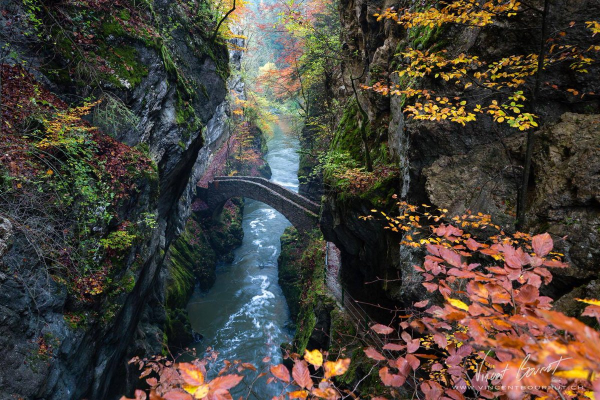 Beautiful! - A bridge in Switzerland.. https://t.co/F6sA5QYJ1Z