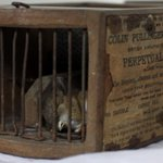 ICYMI Mouse breaks into museum display, gets caught in 155-year-old mousetrap: https://t.co/KylVUqNVXH https://t.co/D0MfR9pIl2