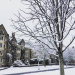 Another snowy day at @princeton_university! Stay warm! ????❄️???? #princetagram by @tigersgogreen https://t.co/Uscub7dyyX https://t.co/VtoRHCZ6AQ