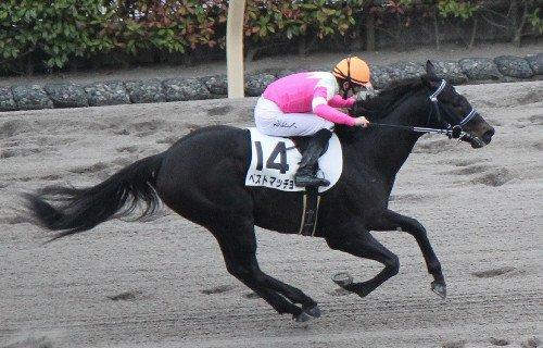 「ベストマッチョ 競馬」の画像検索結果