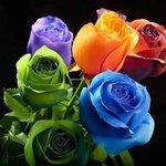@magtys0602 Joyeux anniversaire jolie Magalie, je tadore. Pleins de bisousssssss ???? ???? ???? https://t.co/7dlhc8t6W0