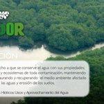 En este feriado de carnaval, cuidemos el agua, no desperdicies este líquido vital #GuardianesDelAgua #ViveEcuador https://t.co/bzxxsqSaMS