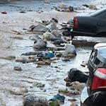 بالصور والفيديو.. النفايات تتنقل مع السيول في جديدة المتن! - https://t.co/uzATUXPd8e #لبنان https://t.co/GlcFHVGzdL