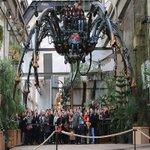 #POinfos #Nantes. Laraignée tisse sa toile aux Machines de lîle [PHOTOS] https://t.co/nxb1jRjL7D https://t.co/s9EySg9Pfx