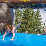 """Love our programs? Nominate City of Vancouver Parks & Recreation for """"Best Summer Camp"""" at https://t.co/yzOy5moNlO https://t.co/PfKGJwWIBw"""