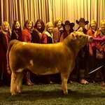 MT @MayorBetsyPrice Special young lady placed @FWSSR. This steer was blind and the owner was told hed never compete https://t.co/asGPnx6Jzd