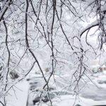 after yesterdays snowfall #Brighton #Boston #BOSnow @universalhub @photosofboston @617Images https://t.co/UEjN6HlgKw