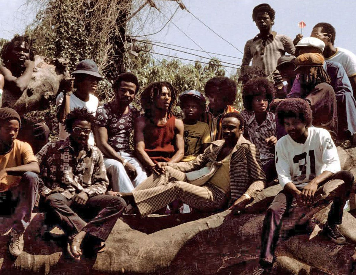 That time @BobMarley + @MichaelJackson hung out on a treetop in Kingston: https://t.co/EUNpN00uYx https://t.co/eRBDRf5M51