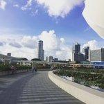 #Singapore #MarinaBaySands #Instapic by @mrs.inta - ???? #mbs #marinabaysands #singapore https://t.co/ZGViSmMTgP