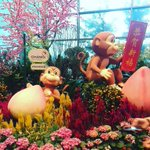 #Singapore #Changi Instagram by @xjadex89x - Singapore airport is so random! #airport #singapore #nextstopaustralia… https://t.co/VeFwljFYQ9