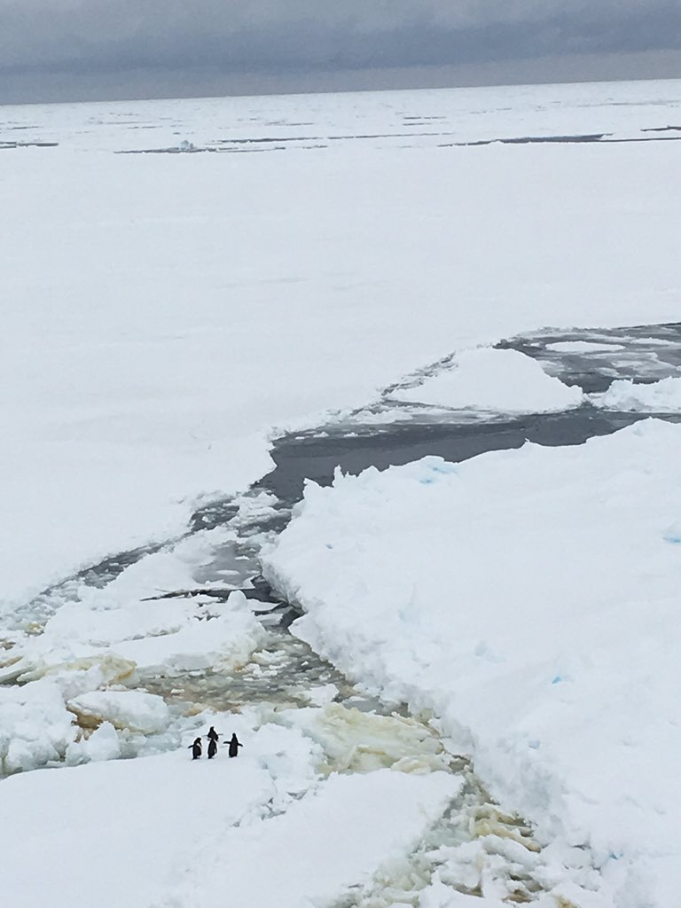 It's a wonderful world. #IceStation https://t.co/0L0ma2SXnf
