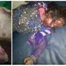 صور لبعض من جرائم #السعودية في #اليمن #ارهابكم_سيرتد_عليكم #KSAkillYemenis https://t.co/TiPZ1cyVJh