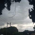 Llueve en Rosario. Sigue el calor atroz. Leve viento del Sur. https://t.co/FQj0M4AtZg