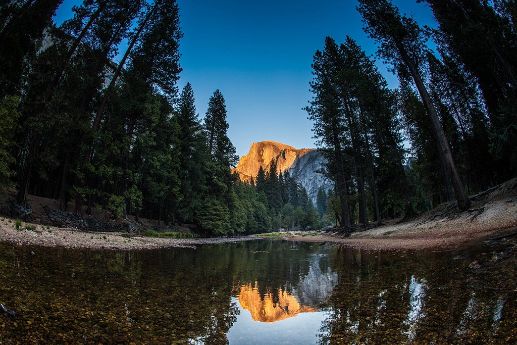 Half Dome Reflection in Yosemite National Park, California | Photography by ©@AnthonyQuintano https://t.co/DPG0C7IwB6