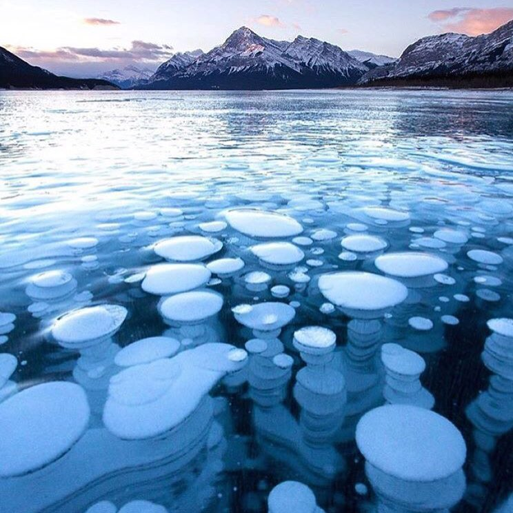 Frozen bubbles trapped in Abraham Lake: https://t.co/S1S3M0I9Zq