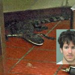 Florida man charged on assault with deadly weapon after tossing gator in Wendy's drive-thru https://t.co/womNaAHj2m https://t.co/fDSIgjF9lM