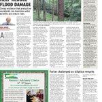 Forests Reduce Flooding @CAugustenborg @jmcurtin @think_or_swim @senhealyeames @Independent_ie @rtenews @desotoole1 https://t.co/6XUR0xT4TO