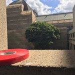 Spotted at Qld Parliament, actual red tape. #qldpol https://t.co/ss5IqhfwCY